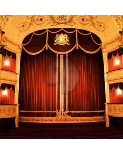 Stage Curtain Computer Printed Photography Backdrop ABD-040