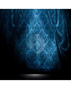 Pattern Fabric Blue Computer Printed Photography Backdrop ABD-160
