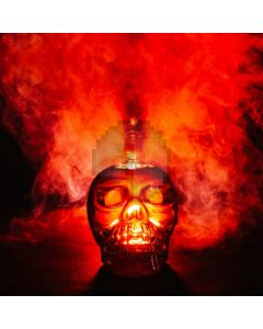 Fire Skull Head Computer Printed Photography Backdrop ABD-168