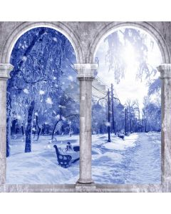 Arch Snow Tree Computer Printed Photography Backdrop ABD-205