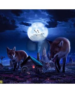 Wolves Moon House Computer Printed Photography Backdrop ABD-305
