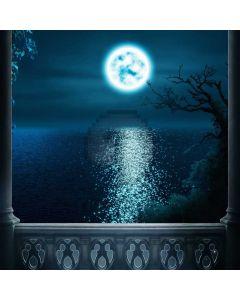 Night Sea Moon Arch Computer Printed Photography Backdrop ABD-371