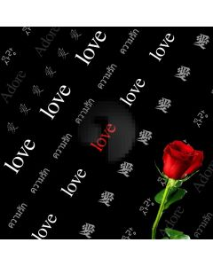 Love Rose Computer Printed Photography Backdrop ABD-455