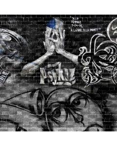 Graffiti Human Computer Printed Photography Backdrop ABD-508