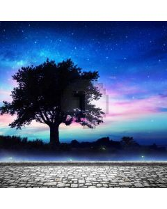 Tree Star Sky Computer Printed Photography Backdrop ABD-538