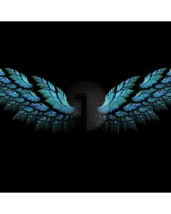 Night Plumage Computer Printed Photography Backdrop ABD-544