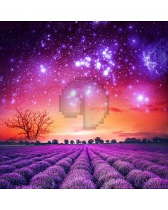 Flower Star Sky Computer Printed Photography Backdrop ABD-567