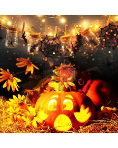 Pumpkin Lantern Light Bottle Computer Printed Photography Backdrop ABD-600