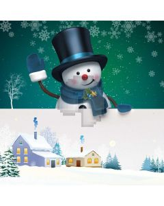 Snowman Snow Shack Computer Printed Photography Backdrop ABD-653