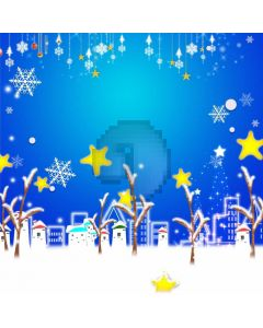 Snowflake Stars House Computer Printed Photography Backdrop ABD-666
