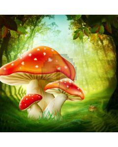 Fungus Woods Grass Computer Printed Photography Backdrop ABD-685