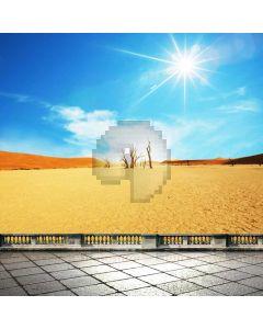 Desert Landscape Sunlight Computer Printed Photography Backdrop ABD-705