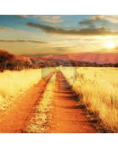 Path Sunfall Grass Computer Printed Photography Backdrop ABD-706
