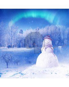 Fir Tree Snowman Aurora Computer Printed Photography Backdrop ABD-716