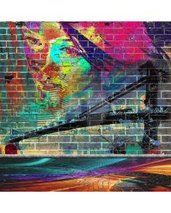 Bridge Graffiti Painting Computer Printed Photography Backdrop ABD-752