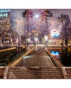 New Year 2020 Computer Printed Photography Backdrop ABD-913