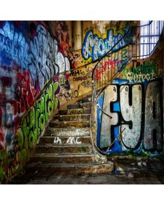 Graffiti Old Stairs Computer Printed Photography Backdrop ABD-932