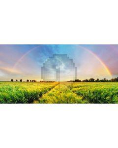 Grass Rainbow Sky Computer Printed Dance Recital Scenic Backdrop ACP-1026