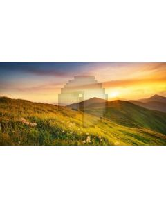Grass Flower Sunset Computer Printed Dance Recital Scenic Backdrop ACP-1040