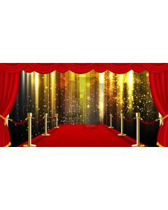 Pillar Gold Light Curtain Computer Printed Dance Recital Scenic Backdrop ACP-1095