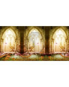 Door Pillar Computer Printed Dance Recital Scenic Backdrop ACP-1216