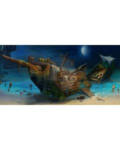 Stranded ship Computer Printed Dance Recital Scenic Backdrop ACP-309