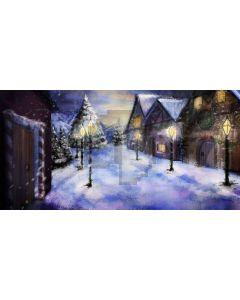 snow night Computer Printed Dance Recital Scenic Backdrop ACP-429