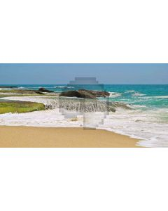 Clean coast Computer Printed Dance Recital Scenic Backdrop ACP-042