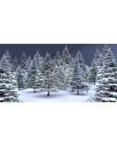 pine tree Computer Printed Dance Recital Scenic Backdrop ACP-457