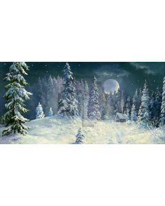 Winter Night Forest Computer Printed Dance Recital Scenic Backdrop ACP-470