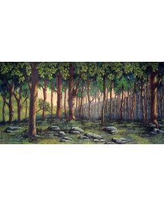 fantasy  forest Computer Printed Dance Recital Scenic Backdrop ACP-481