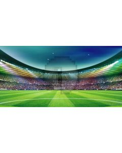 Wide stadium Computer Printed Dance Recital Scenic Backdrop ACP-054