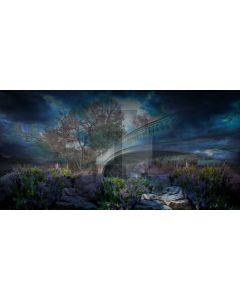 Tree Flower Stone House Computer Printed Dance Recital Scenic Backdrop ACP-580