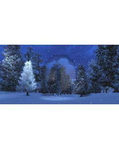 Snow Tree Cloud Computer Printed Dance Recital Scenic Backdrop ACP-589