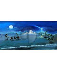Moon Snow Tree Persons Camel Computer Printed Dance Recital Scenic Backdrop ACP-597