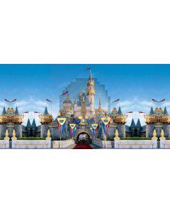 Castle Flag Arch Cloud Sky Computer Printed Dance Recital Scenic Backdrop ACP-603