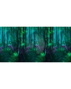 Forest Tree Light Computer Printed Dance Recital Scenic Backdrop ACP-604