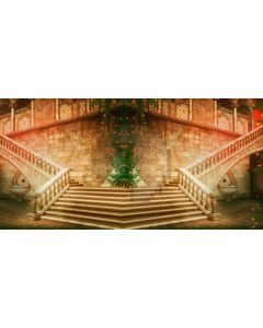 Stairs Brick Plant Flowers Computer Printed Dance Recital Scenic Backdrop ACP-641