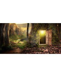 Forest Tree Door Light Computer Printed Dance Recital Scenic Backdrop ACP-650