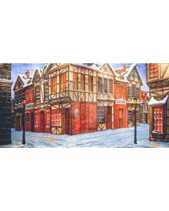 House Street Window Door Snow Computer Printed Dance Recital Scenic Backdrop ACP-835