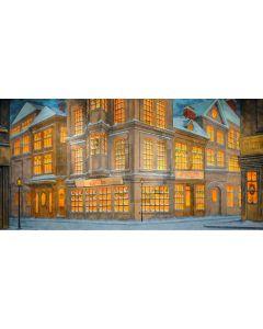 House Window Door Light Computer Printed Dance Recital Scenic Backdrop ACP-846