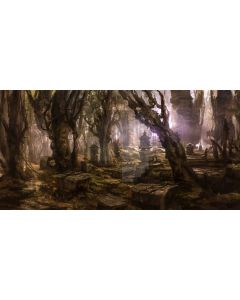 Tree Stone Light Computer Printed Dance Recital Scenic Backdrop ACP-874