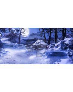 Moon Tree Stone Night Computer Printed Dance Recital Scenic Backdrop ACP-878
