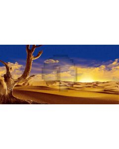 Scorched Desert Computer Printed Dance Recital Scenic Backdrop ACP-090