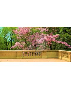 Tree Flower Balcony Computer Printed Dance Recital Scenic Backdrop ACP-943