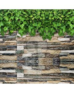 Leaves Wall Stone Computer Printed Photography Backdrop AUT-162