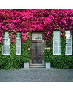 Door Flower Computer Printed Photography Backdrop AUT-921