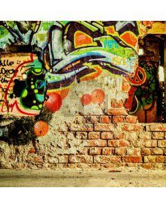Graffiti Color Computer Printed Photography Backdrop AUT-930