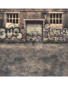 Graffiti wall Computer Printed Photography Backdrop DGX-20