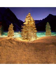 Beautiful XMAS tree Computer Printed Photography Backdrop DGX-21
